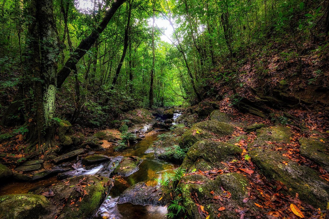 Reserva Vagafogo, em Pirenópolis, oferece brunch com 45 produtos naturais,  circuito de aventuras e trilhas por paisagens deslumbrantes - Curta Mais