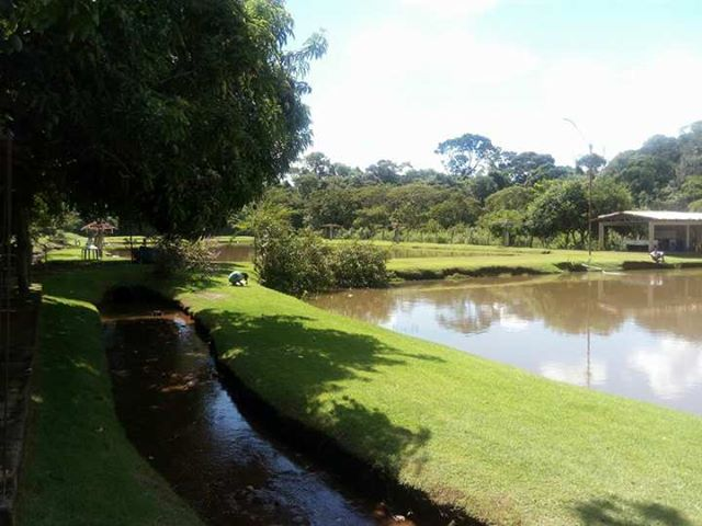 pesque pague em Goiânia: Pesque Pague Do Carlim