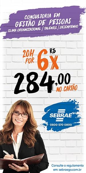 SEBRAE CONSULTORIA VENDAS