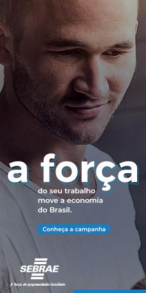SEBRAE halfpage Campanha Credenciamento jul_ag 19 PI 56592