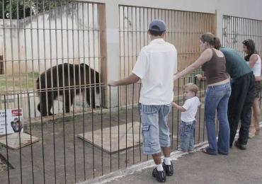 Mutirama e Zoológico de Goiânia abrem com programação especial no Dia das Crianças