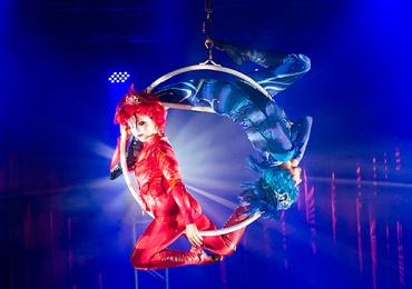 Descubra o Universo de Marcos Casuo, grande estrela do Cirque du Soleil