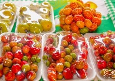 Feira orgânica em Goiânia é a opção para quem busca hábitos saudáveis