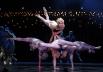 Cirque du Soleil pode decretar falência por causa da pandemia do coronavírus