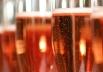 Adega promove evento com cerca de 300 rótulos de vinhos, espumantes, destilados e cerveja