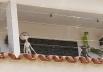 Casa em Goiânia com ETs chama atenção de internautas e viraliza na web