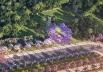 Conheça o novo (e lindíssimo) projeto do parque na Rodovia dos Romeiros, na grande Goiânia