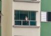 Vídeo flagra criança sentada em sacada de prédio e assusta moradores em Goiânia