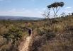 Parques de Brasília e do DF recebem projeto de caminhadas