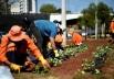 Campanha em Brasília arrecada agasalhos em troca de mudas de flores