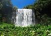 5 motivos para conhecer a Cachoeira de Mandaguari a 51 km de Uberlândia