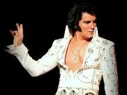 Maior tributo a Elvis desembarca em Brasília para apresentação única