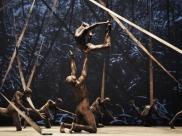 Espetáculo Cão Sem Plumas, da renomada Deborah Colker, chega a Brasília