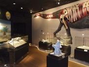 10 museus para visitar e curtir um bom passeio cultural em Uberaba e região