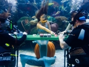 Goiânia recebe primeiro Campeonato de Truco Subaquático