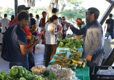 Conheça a feira de produtos naturais e orgânicos que acontece todas as terças-feiras em Uberlândia