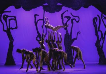 Goiânia recebe turnê do premiado espetáculo de dança 'Mazombo' | Serão duas noites de apresentações incríveis na capital