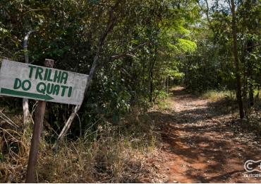 Conhecemos uma trilha em meio a natureza exuberante pertinho de Goiânia