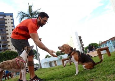 Evento promete divertir cães e donos com entrada gratuita
