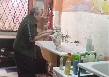 Vídeo: Dono de Pet Shop é flagrado fazendo dança fofa ao dar banho em cachorro