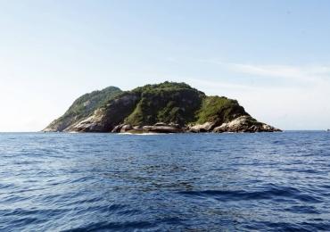 Conheça a ilha brasileira que é habitada apenas por serpentes venenosas