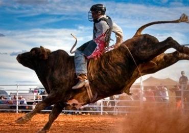 1º Rodeio Show de Goiânia traz atrações musicais e competidores de todo o país; confira a programação