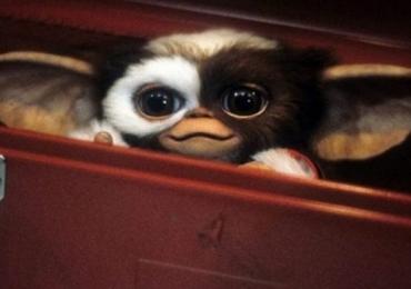 Gremlins, sucesso dos anos 80, ganhará série de animação na Warner
