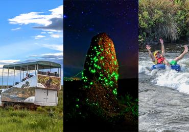 Bioluminescência, safári e muita aventura no Parque Nacional das Emas em Goiás