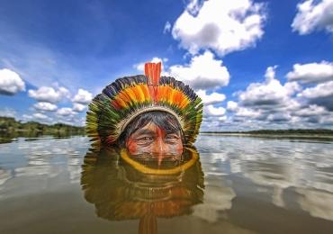 Exposição gratuita em Brasília marca o mês do meio ambiente