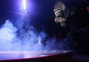 Circo chega a Uberlândia com artistas da Rússia, mágicos de Las Vegas e King Kong entre as atrações   Atração ficará na cidade até o dia 22 de setembro e promete encantar crianças e adultos