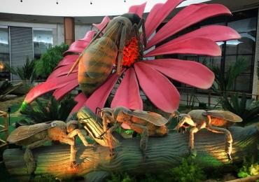 Exposição gratuita com insetos gigantes invade shopping de Brasília