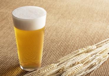 Universidade oferece curso prático de produção de cerveja artesanal