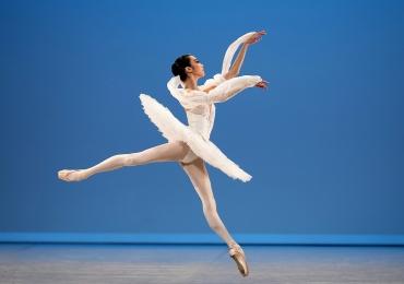 Seletiva de uma das maiores competições de dança do mundo acontece em Goiânia