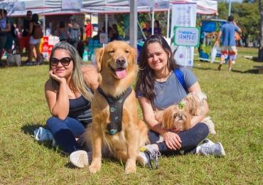 Feira de adoção de animais, campeonatos para pets, palestras e outras atividades gratuitas são atrações de evento em Brasília