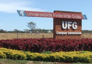 UFG cria primeira graduação em Inteligência Artificial do Brasil e abre vagas em Goiânia