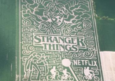 Fazenda cria labirinto em milharal com tema da série Stranger Things