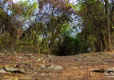 Laboratório: uma trilha de Mountain Bike perfeita dentro de Goiânia que provavelmente você não sabia que existia