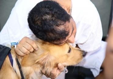 Pacientes de Hospital de Goiânia recebem terapia com cães, tirando o foco da dor estimulando a troca afetiva