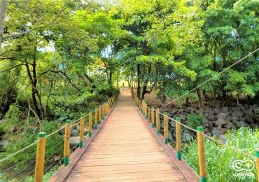 Bernardo Élis: um charmoso parque em Goiânia que você provavelmente não conhecia