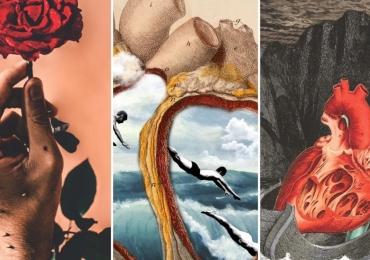 """A mostra """"Casa Colagem"""", do artista Hal Wildson, tem como tema a natureza"""