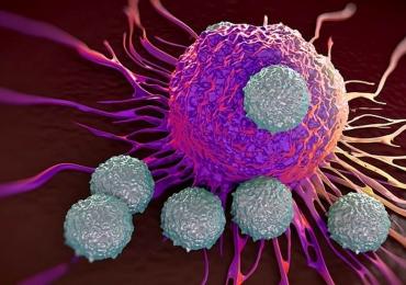 Cientistas criam vírus modificado capaz de matar células do câncer