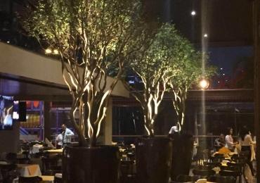 Saccaria do Setor Marista reabre como o novo restaurante da família de Goiânia