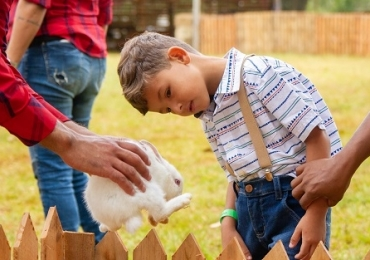 Projeto em Brasília proporciona o contato das crianças com o ambiente rural