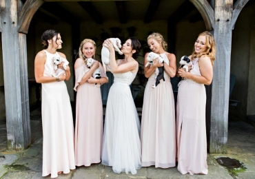 Cachorrinhos para adoção substituem buquê de flores em casamento