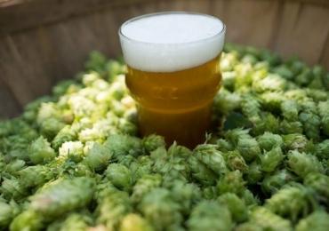 Evento em Brasília reúne cervejarias artesanais em 8 horas de 'open beer'