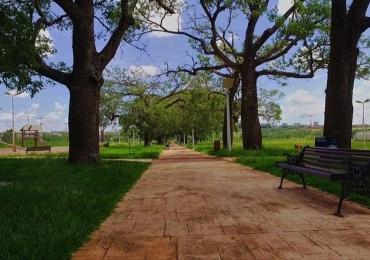 Domingo no Parque das Barrigudas tem música, dança e muita diversão em Uberaba