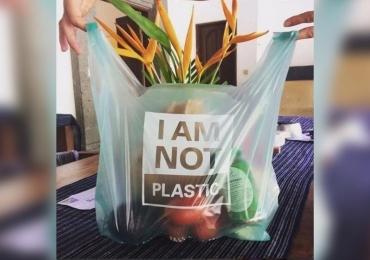 Plástico nunca mais! Cientista cria sacola de mandioca que dissolve na água e custa R$ 1