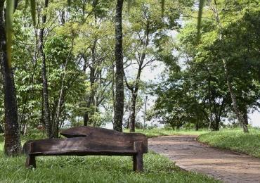 8 Parques ecológicos para curtir as férias em Brasília