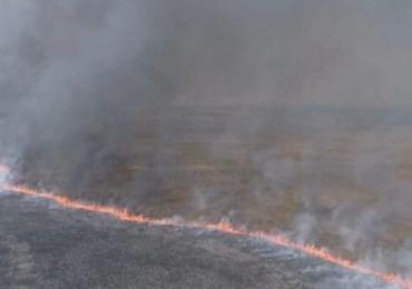 Incêndio destruiu mais de 6 mil hectares do Parque Nacional das Emas em Goiás