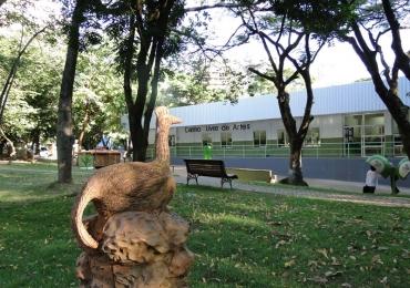 'Centro Livre de Artes' abre matriculas para 2020 com aulas gratuitas em Goiânia